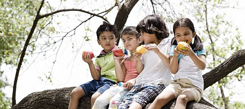 Four small children sit atop a tree branch, eating a variety of fruits.