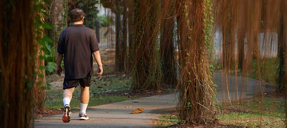 A man walks away on a lush garden path.