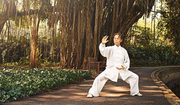 A woman dressed in white clothing practices Tai Chi at the base of a banyan tree.