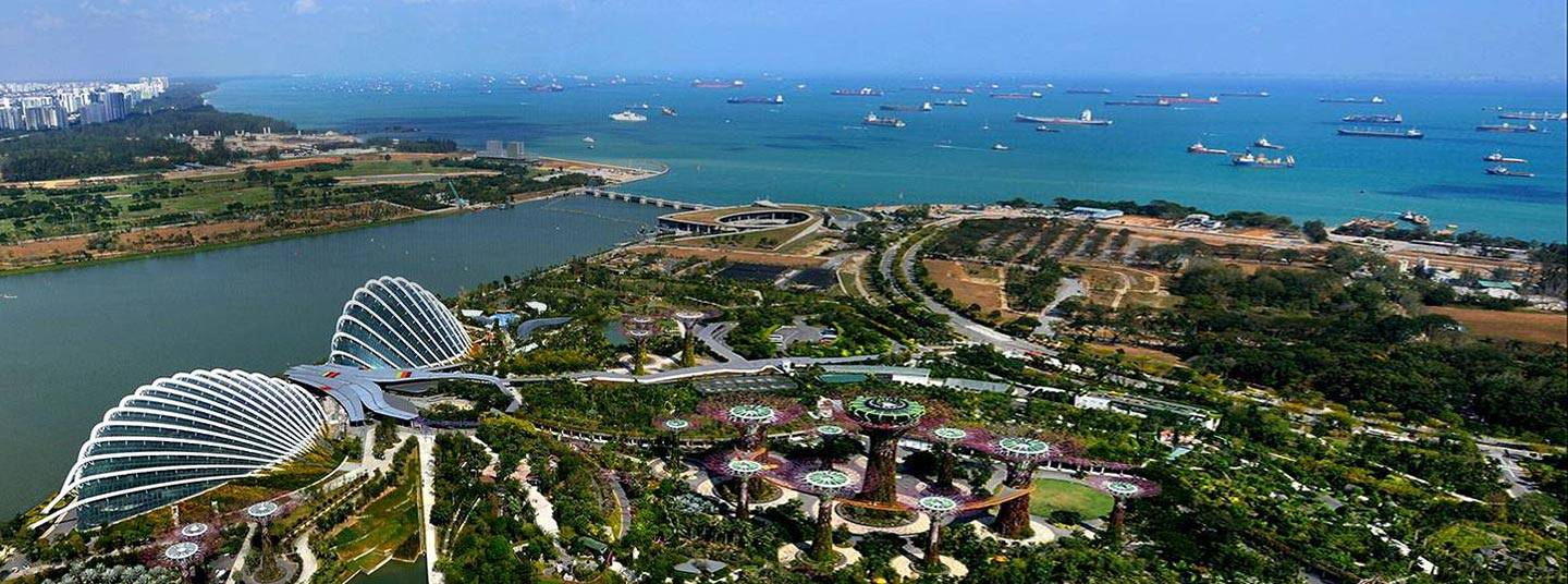 An aerial view of Gardens by the Bay in Singapore by day.