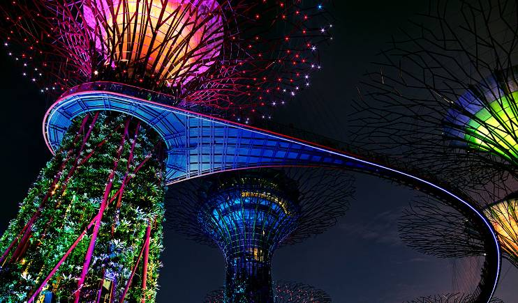 Night shot of multi-colored lights on tree structures in Singapore's Gardens By The Bay botanical garden.