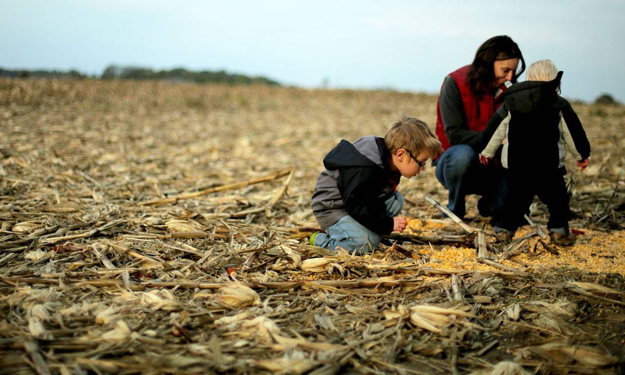 A mother in a red vest kneels in a corn field with two young boys, looking at something on the ground. Both boys wear glasses and windbreakers.