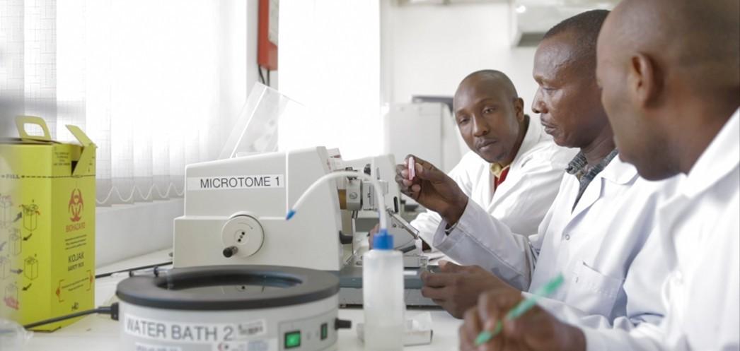 23 modernized hospital labs