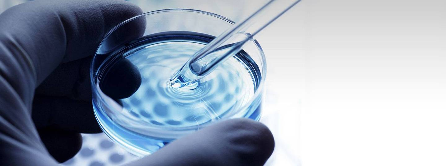 A close-up of a blue gloved hand holding a Petri dish and pipette.