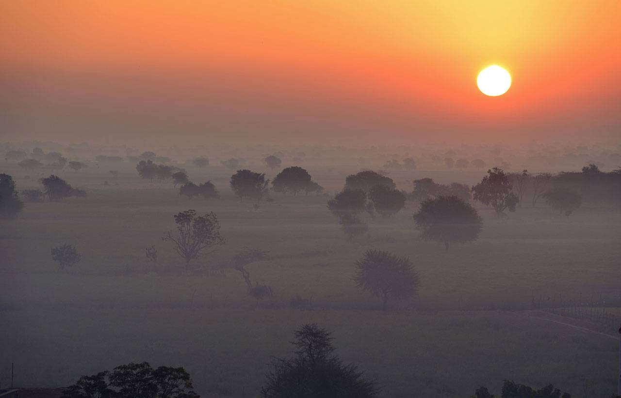 A hazy orange sky with a large sun; view across a savanna with short, sparse trees.