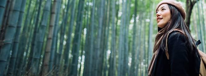 ジョギング用ベビーカーを押しながら林の中を走る女性を背後から撮影した画像。