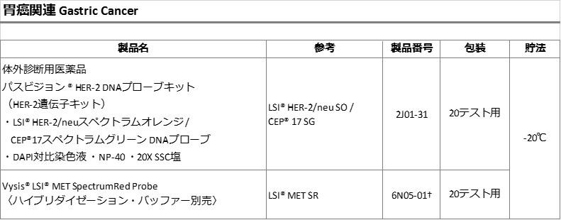 JP-AMD-VYSYS-DNA-2-GastricCancer