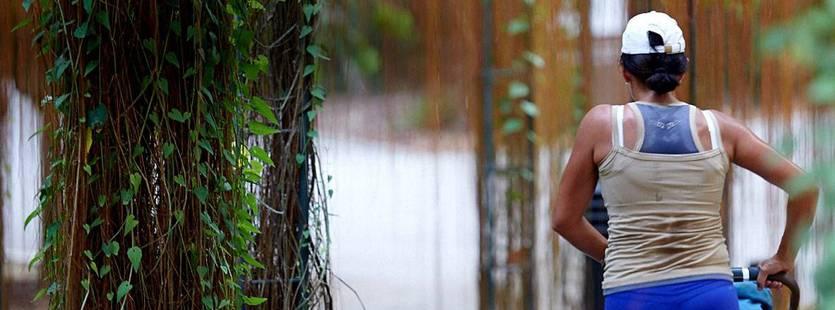 ジョギング用ベビーカーを押しながら林の中を走る女性を背後から撮影した畫像。